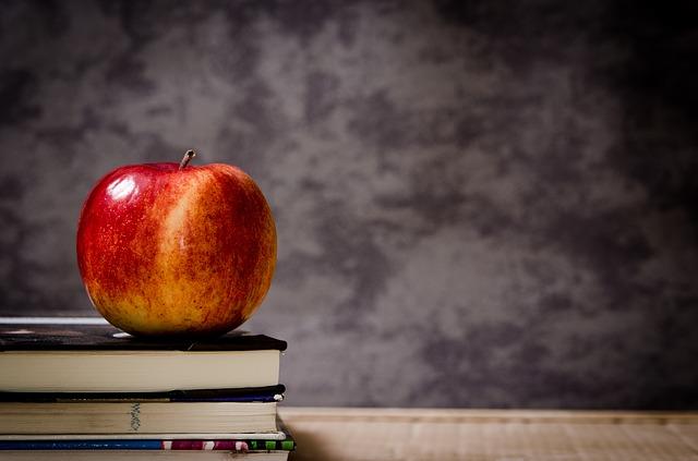 """Bac diferențiat, generalizarea """"afterschool"""", reforma carierei didactice. Planuri în Educație din programul de guvernare"""