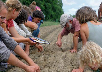 V Česku vzniká nová škola pro ekologické zemědělce, nabídne praxi u farmářů
