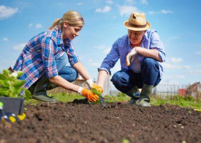 Младежи ще учат в реална работна среда как се отглеждат трайни насаждения